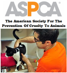 The American society for prevention of cruelty to animals